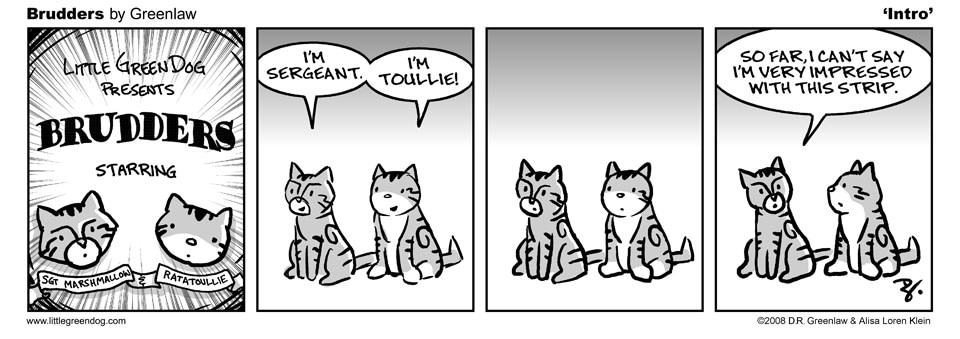 Brudders 001 Intro. A comic strip about cat siblings.