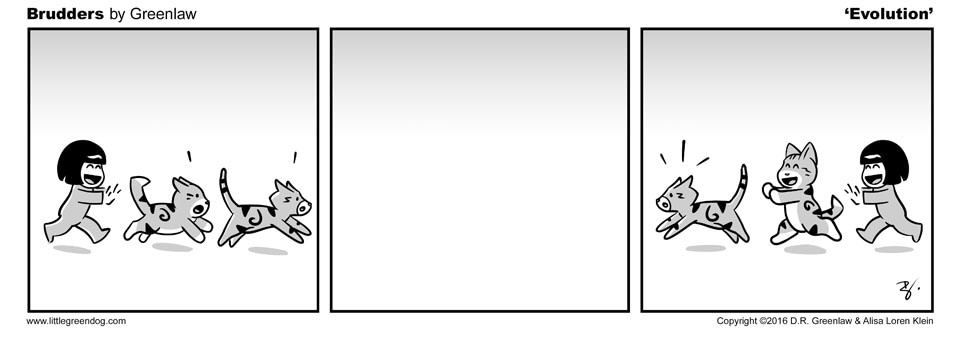 Brudders 062-Evolution